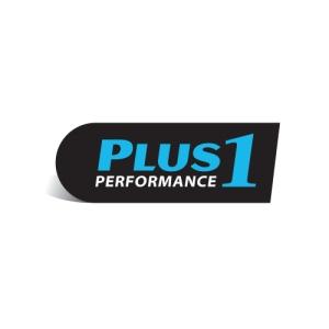 plusone_logo
